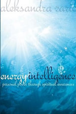 Energy Intelligence - Aleksandra Zaric