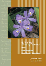Wildflowers of Blue Ridge and Great Smoky Mountains - Leonard Adkins