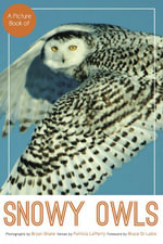 A Picture Book of Snowy Owls - Bryan Shane
