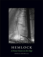 Hemlock : A Forest Giant on the Edge
