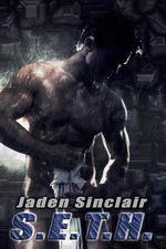 S.E.T.H. (SETH/SHILO, Book #1) - Jaden Sinclair