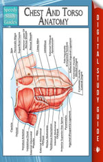 Chest And Torso Anatomy (Speedy Study Guide) - Speedy Publishing