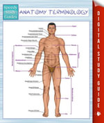 Anatomy Terminology (Speedy Study Guides) - Speedy Publishing