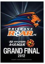 Hyundai A-League 2012 Grand Final