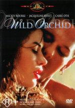 Wild Orchid - Luiz Lobo