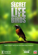 The Secret Life of Birds - Iolo Williams