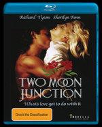 Two Moon Junction - Sherilyn Fenn
