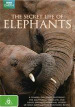 The Secret Life of Elephants - Sarah Parish