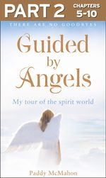 Guided By Angels : Part 2 of 3: There Are No Goodbyes, My Tour of the Spirit World - Paddy McMahon