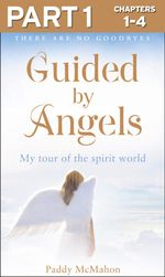 Guided By Angels : Part 1 of 3: There Are No Goodbyes, My Tour of the Spirit World - Paddy McMahon