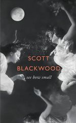 See How Small - Scott Blackwood