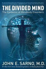The Divided Mind : The Epidemic of Mindbody Disorders - John E Sarno