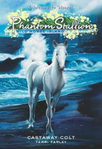 Phantom Stallion : Wild Horse Island #4: Castaway Colt - Terri Farley