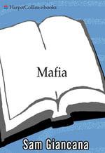 Mafia : The Government's Secret File on Organized Crime - none