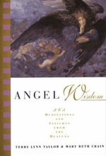 Angel Wisdom : 365 Meditations and Insights from the Heavens - Terry Lynn Taylor