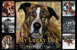 My Lucky Dog - Mellon Tytell