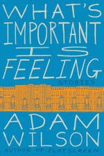 What's Important Is Feeling : Stories - Adam Wilson