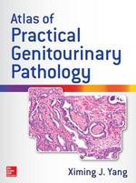 Atlas of Practical Genitourinary Pathology - Ximing James Yang