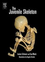 The Juvenile Skeleton - Louise Scheuer