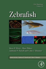 Fish Physiology : Zebrafish: Zebrafish