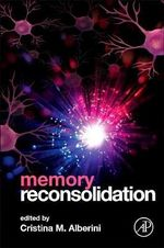 Memory Reconsolidation : Why We Do What We Do without Knowing Why We Do it