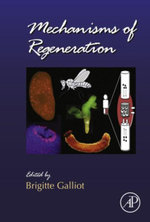 Mechanisms of Regeneration