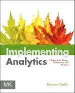 Implementing Analytics : A Blueprint for Design, Development, and Adoption - Nauman Sheikh