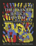 The Juvenile Justice System : Delinquency, Processing, and the Law - Alida V. Merlo
