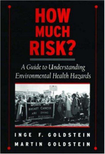 How Much Risk? : A Guide to Understanding Environmental Health Hazards - Inge Goldstein