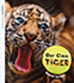 Oxford Literacy Independent Non-fiction Our Class Tiger  Pack : Oxford Literacy Independent - Aleesah Darlison