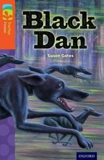 Oxford Reading Tree Treetops Fiction : Level 13 More Pack A: Black Dan - Susan Gates