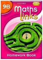MathsLinks : 3: Y9 Homework Book B Pack of 15 - Ray Allan