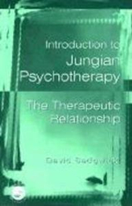 Introduction to Jungian Psychotherapy : The Therapeutic Relationship - David Sedgwick