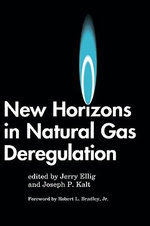 New Horizons in Natural Gas Deregulation :  Oil and Gas Field Development Techniques
