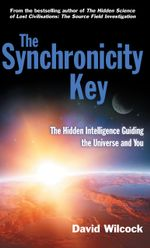 The Synchronicity Key : The Hidden Intelligence Guiding the Universe and You - David Wilcock