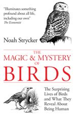 The Magic and Mystery of Birds : The Surprising Lives of Birds and What They Reveal About Being Human - Noah Strycker