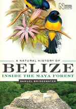 A Natural History of Belize : Inside the Maya Forest - Samuel Bridgewater