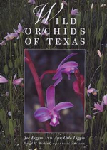 Wild Orchids of Texas - Joe Liggio