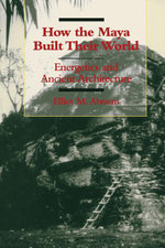 How the Maya Built Their World : Energetics and Ancient Architecture - Elliot M. Abrams