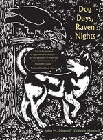 Dog Days, Raven Nights : The Adventures of an Urban Wildlife Lover Who Turn... - John M. Marzluff