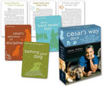 Cesar's Way Deck : 50 Tips for Training and Understanding Your Dog :  50 Tips for Training and Understanding Your Dog - Cesar Millan
