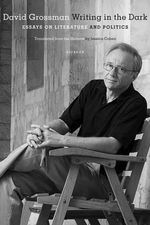 Writing in the Dark : Essays on Literature and Politics - David Grossman