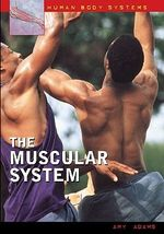 The Muscular System the Muscular System - Amy Adams