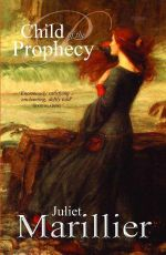 Child of the Prophecy : Sevenwaters Series : Book 3 - Juliet Marillier
