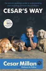 Cesar's Way :  The Natural, Everyday Guide to Understanding and Correcting Common Dog Problems - Cesar Millan