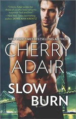 Slow Burn : Seducing Mr. RightTake Me - Cherry Adair
