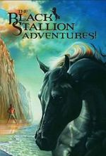 Black Stallion Adventures! (Boxed : The Black Stallion's Ghost / The Black Stallion Revolts / The Black Stallion Returns / The Black Stallion - Walter Farley