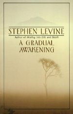 Gradual Awakening, A : Experiences of a Zen Student Out on His Ear - Levine