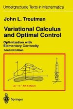 Variational Calculus and Optimal Control : Optimization with Elementary Convexity : Optimization with Elementary Convexity - John L. Troutman