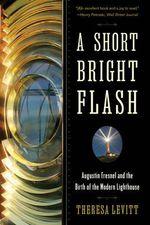 A Short Bright Flash - Theresa Levitt